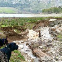 Lago di Piana Pet and Travel