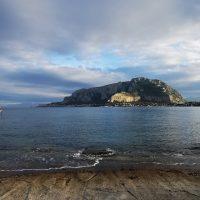 Palermo Pet&Travel